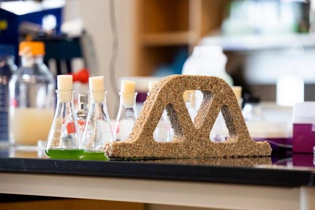 Crecimiento y mineralización de bacterias en la estructura de hidrogel de arena © Colorado University Boulder / PA
